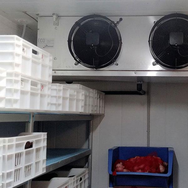 Cámara frigorifica de la Masía de Xamandreu